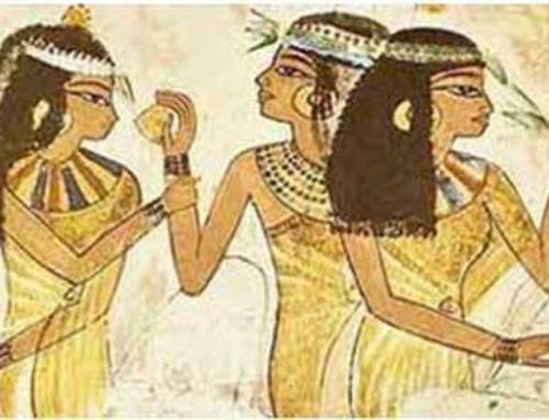 Un antico alleato fin dai tempi degli Egizi