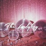 "Recensione dal Blog ""The Lady Boy"" 4"