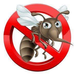 Zanzare come Difendersi: 4 Soluzioni Naturali 3